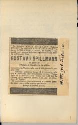 Spillmann_003v.tif